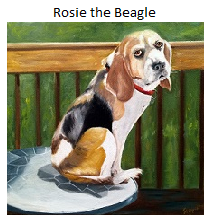 Rosie the Beagle